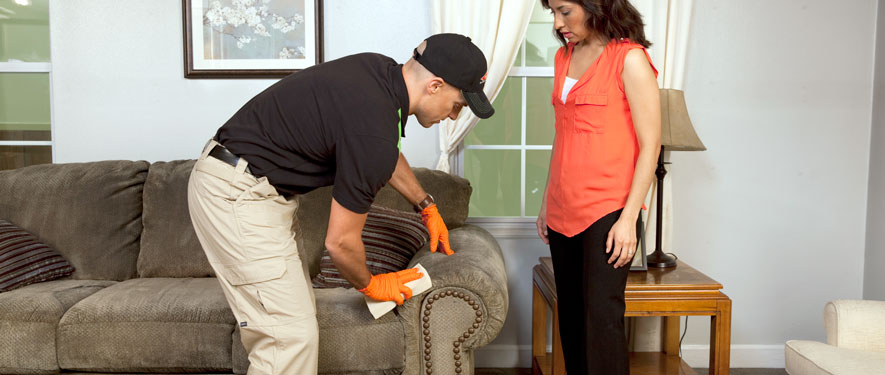 Doylestown, PA carpet upholstery cleaning