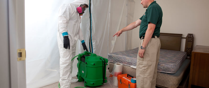 Doylestown, PA mold removal process